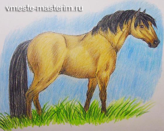 нарисовать красивую лошадь