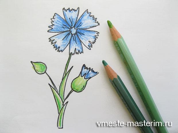 как нарисовать васильки