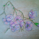как нарисовать цветы карандашом