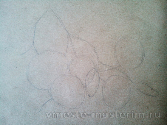 vescvety03