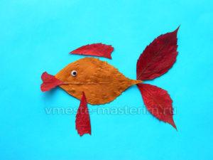 Аппликация из осенних листьев «Рыбка» (мастер-класс)