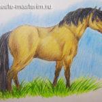 Как нарисовать лошадь поэтапно карандашом (мастер-класс)