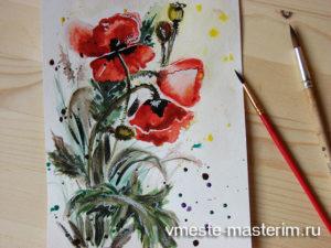 Как нарисовать маки поэтапно для начинающих