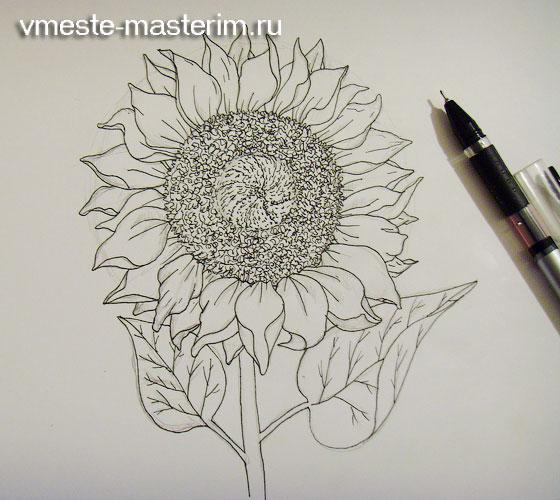 Как красиво нарисовать подсолнух