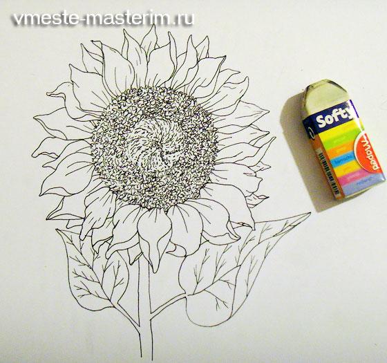 Как нарисовать цветок подсолнух