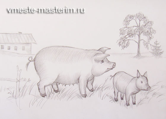 Как нарисовать свинью и поросенка